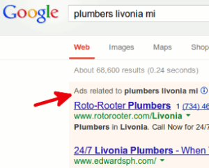 Paid search results (i.e. ads)